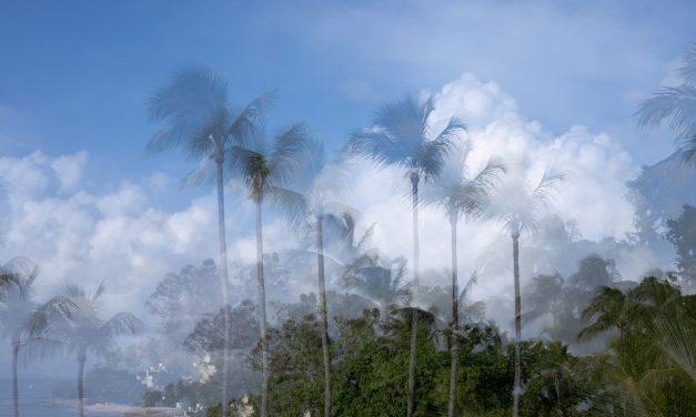 Barbados, l'isola divisa in due
