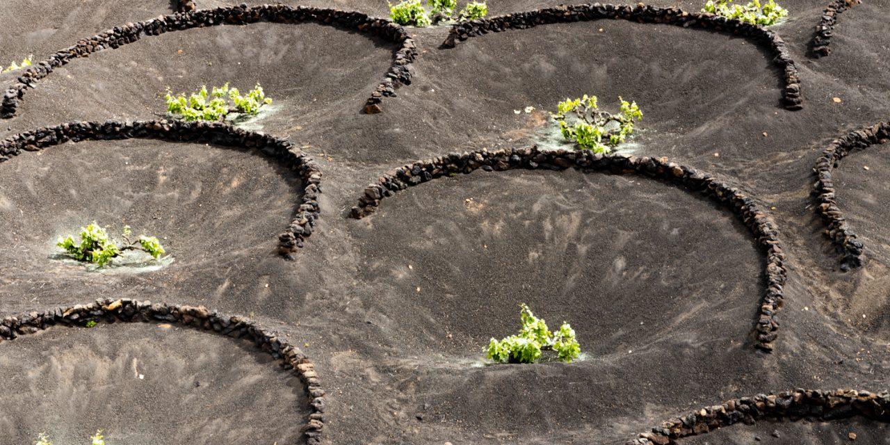 Lanzarote, l'isola che sembra Marte